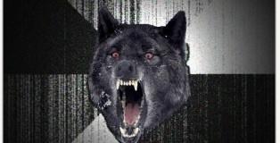 Full Tilt Insanity Wolf